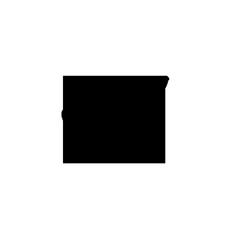 apltronic008_disk_C1