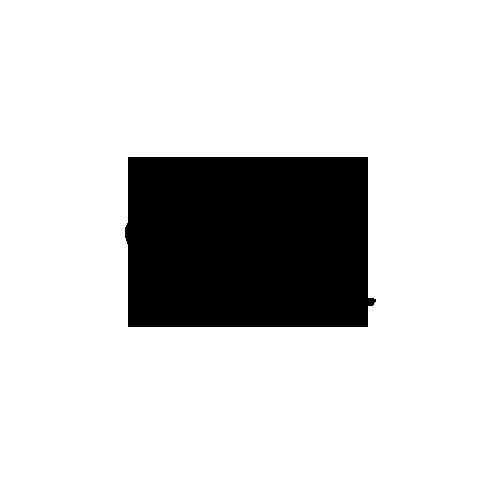apltronic008_disk_C2